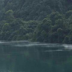 Phoenix Island Resort on Dongjiang Lake User Photo