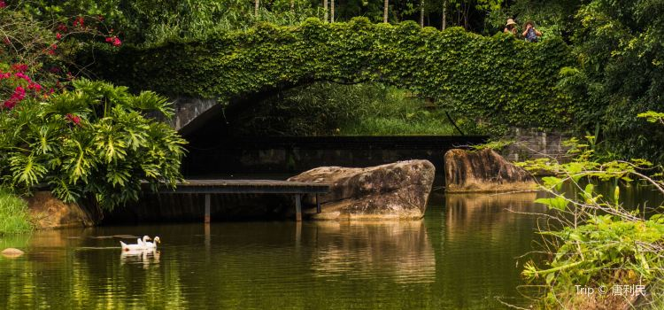Yanoda Rainforest Cultural Tourism Zone2