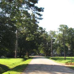 Longue Vue House & Gardens User Photo