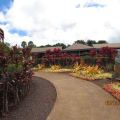 Dole Plantation User Photo