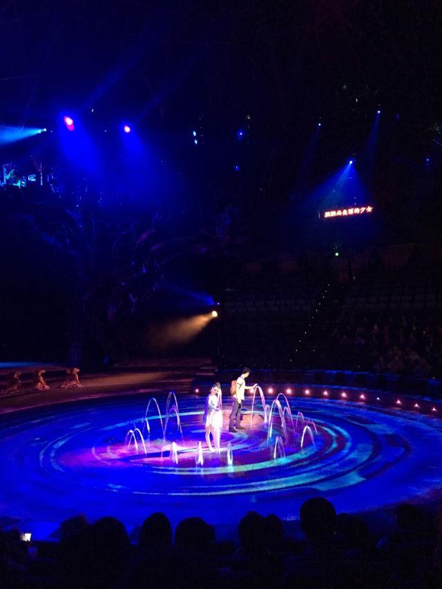 Dai Performance Show