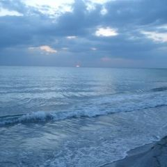 太陽麗都海灘用戶圖片