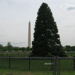 Washington Monument User Photo