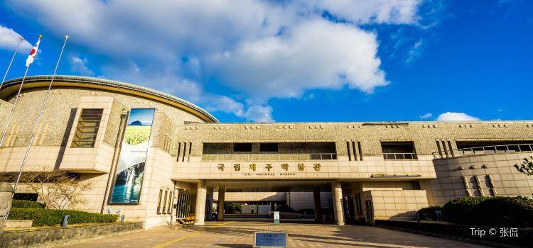 국립 제주 박물관