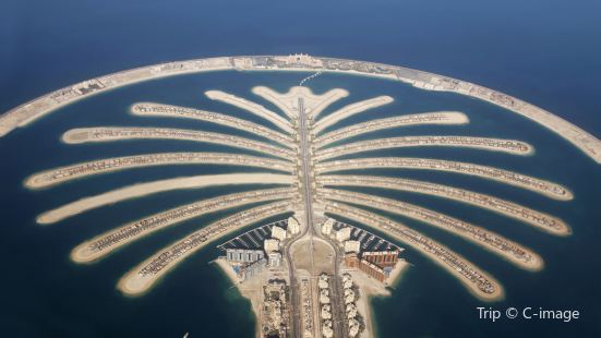 The Palm Jumeirah Cruise