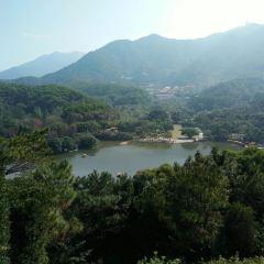 仙湖公園用戶圖片