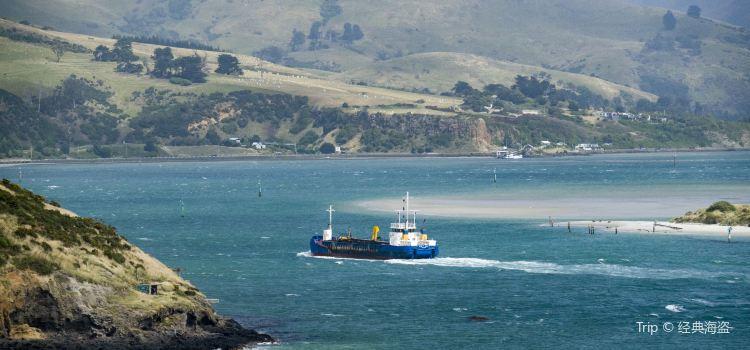 Otago Peninsula3