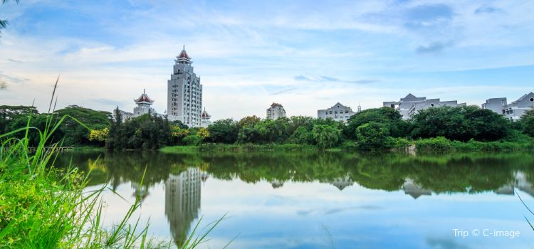 Jimei University1