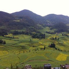 Shiwandashan User Photo