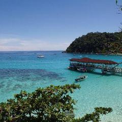 Flora Bay Divers - Perhentian用戶圖片