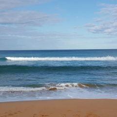 Logan's Beach用戶圖片