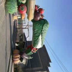 Nanyuan Town Farm User Photo