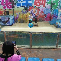 堯廟海洋樂園用戶圖片