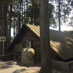 치란 카미카제 평화 박물관 여행 사진