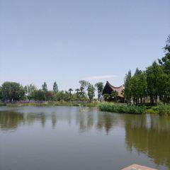 Colorful Yunnan Ancient City User Photo