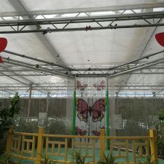 난궁 우저우 식물낙원 여행 사진