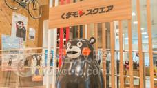 熊本熊部长办公室