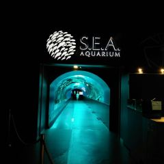 S.E.A. Aquarium User Photo