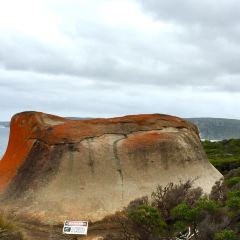 Remarkable Rocks User Photo