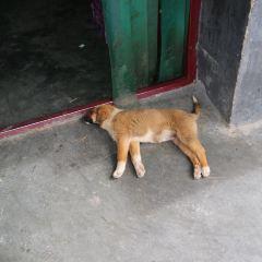 Drepung Monastery User Photo