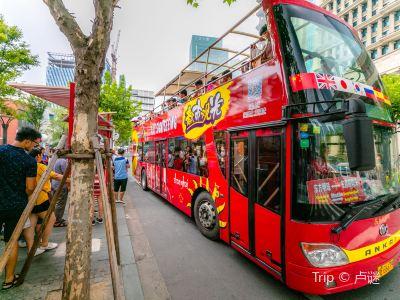 도시관광 투어버스