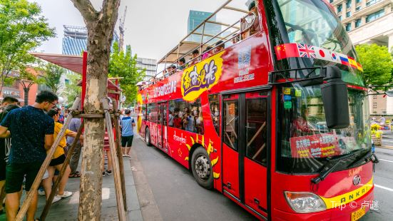 City Sightseeing Tour Bus