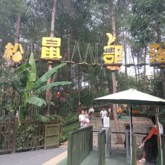 Squirrel Tribe Forest Holiday Park User Photo