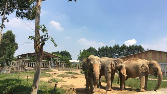 香市動物園