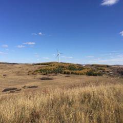 禦道口牧場風車群用戶圖片