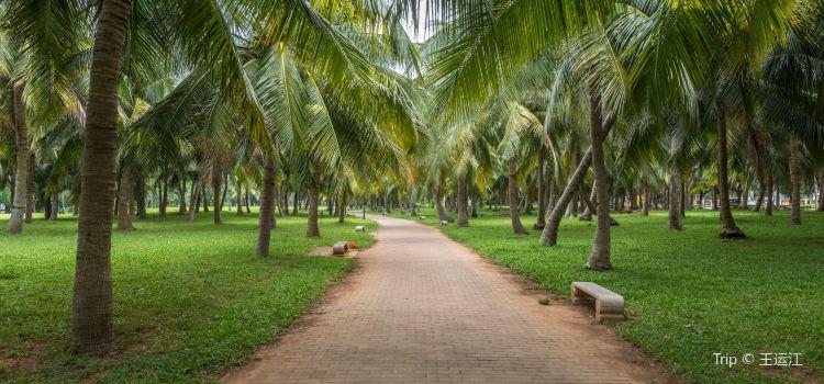 Baishamen Park3