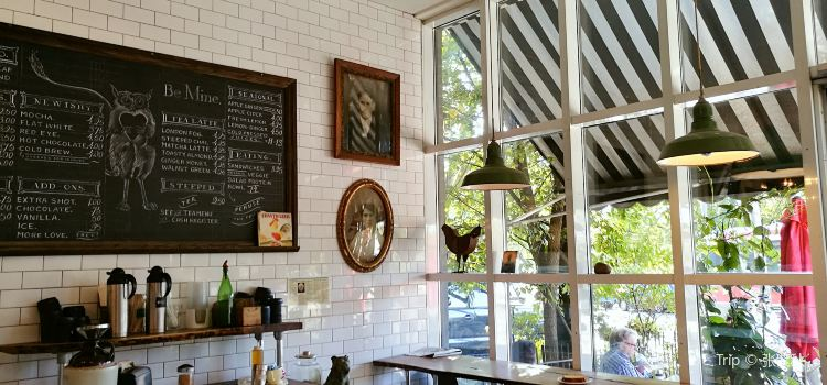 Rooster Coffee House2