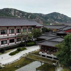 中國佛學院普陀山學院用戶圖片