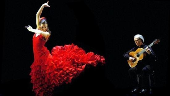 Palacio del Flamenco弗拉明戈表演