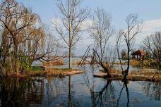 观鸟岛湿地公园-凉山-一个大橙子