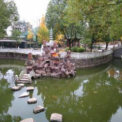 Yongqing Temple User Photo