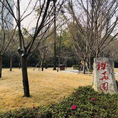 Chengdu Culture Park User Photo
