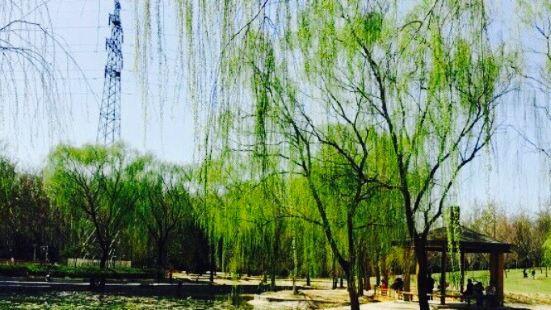 Mananli Park