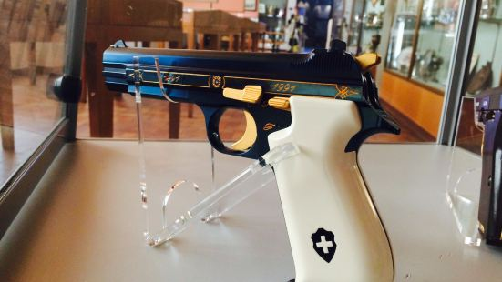 Swiss Rifle Museum (Schweizerisches Schutzenmuseum)