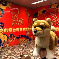 CCTV Headquarters Building User Photo