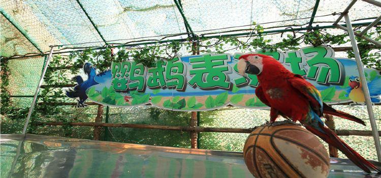 Longsha Zoological and Botanical Gardens2