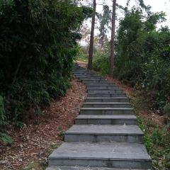 Xiandao Park (Southeast Gate) User Photo