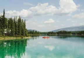 趙又廷:加拿大是一個特別適合光合作用的地方