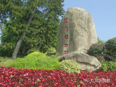 샤먼 원림식물원(하문 원림식물원)