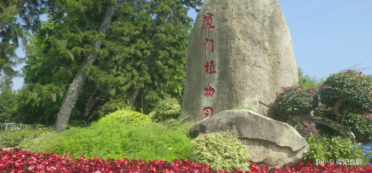 Xiamen Botanical Garden1