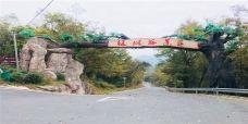 绿林谷景区-泾县-AIian
