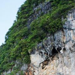 바이킹 동굴 여행 사진