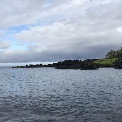霍洛灣用戶圖片