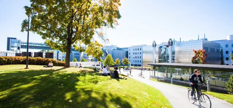 University of Tampere2