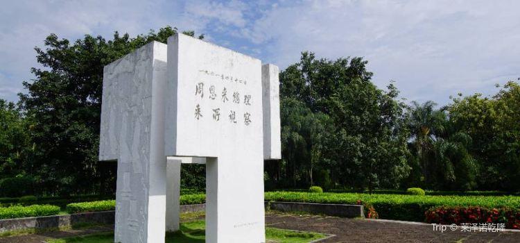 Tropical Flower Garden1