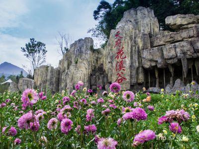 Tianfu Flower Valley